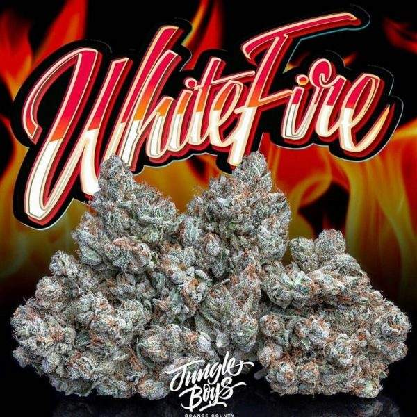 white Fire Jungleboysexotic.com